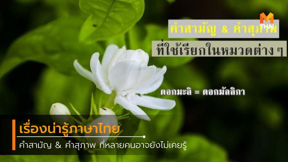 การบ้าน คำสามัญ คำสุภาพ ภาษาไทย เรื่องน่ารู้